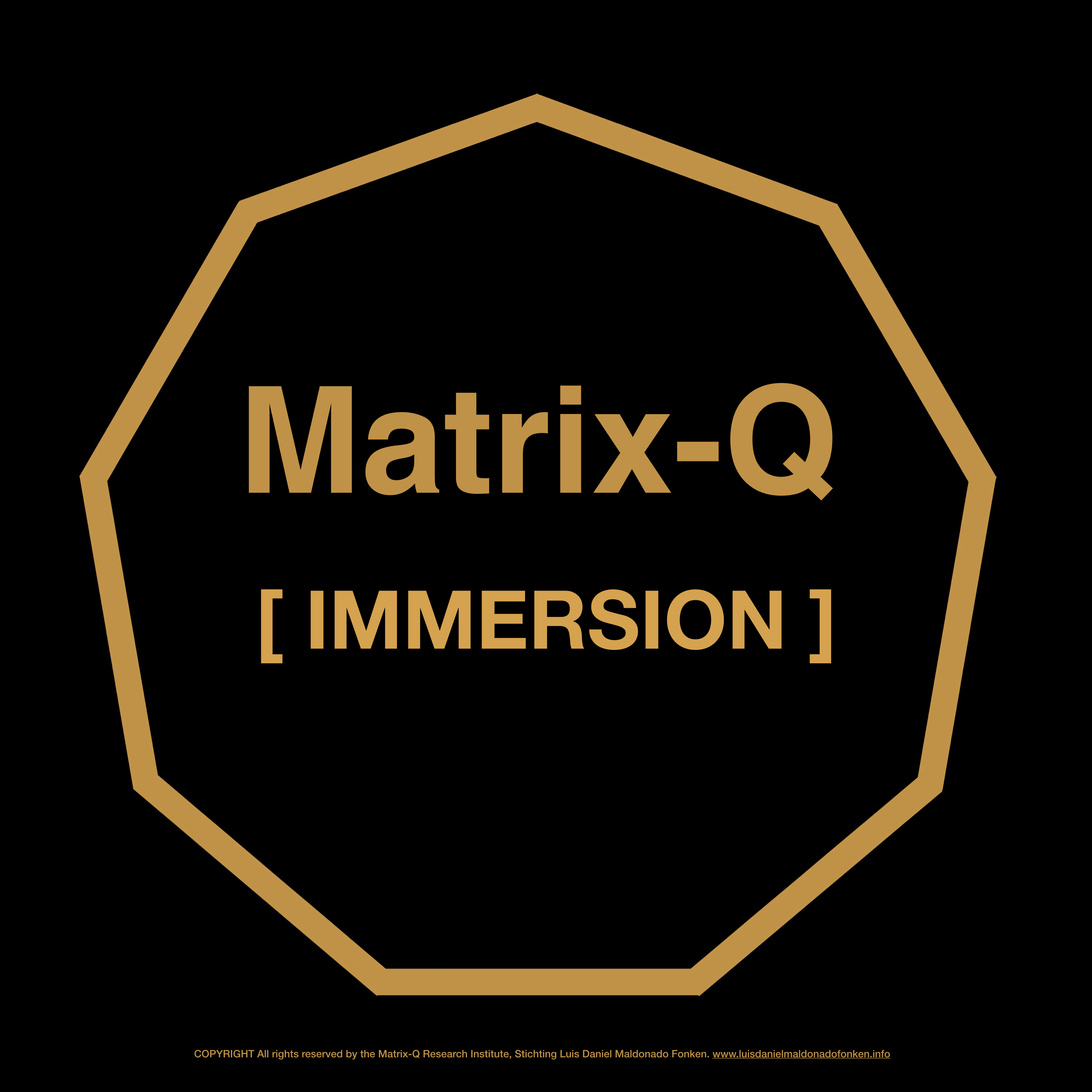 Matrix-Q Board Members – Immersion – The Matrix-Q SDG Bank